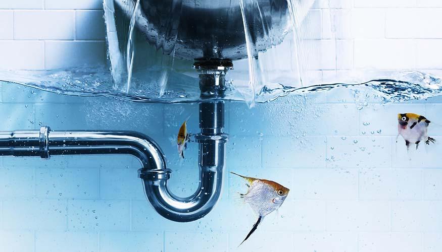 Beykoz Su Kaçağı Tespiti, Beykoz Robotlu Su Kaçağı, Beykoz Su Tesisatçısı, Beykoz Su Kesintisi, Beykoz Su Kaçağı, Beykoz Sıhhi Tesisatçı